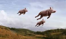 pigs can fly1