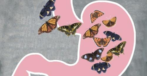 butterflies-stomach_el_featured_0-1w7obsd