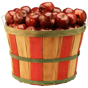 apples_bushel-300x300